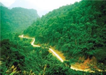 Hệ thống Di tích lịch sử trên Đường Hồ Chí Minh trong lòng Di sản  Thiên nhiên thế giới Vườn Quốc gia Phong Nha - Kẻ Bàng